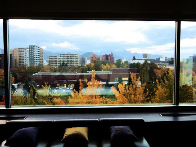 窓の大きな広々した客室