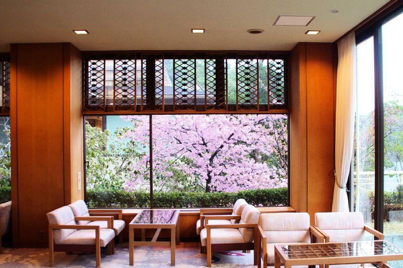 伝統と格式を感じる宿「伊豆今井浜温泉 今井荘」
