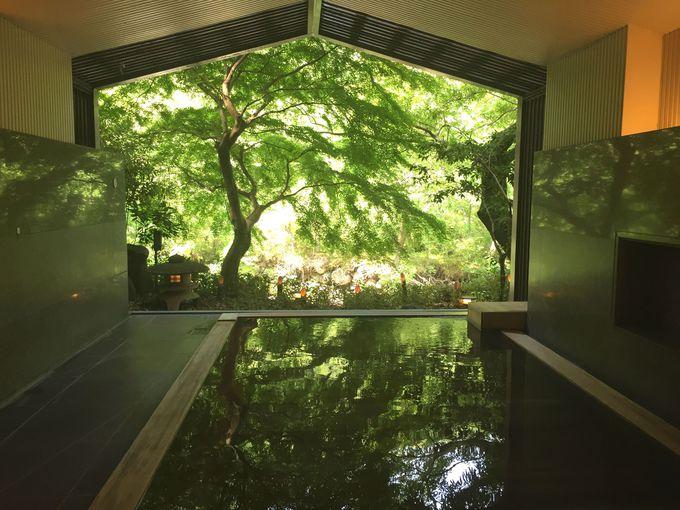 絵画の世界に溶け込んだかのような温泉に身を委ねる幸福