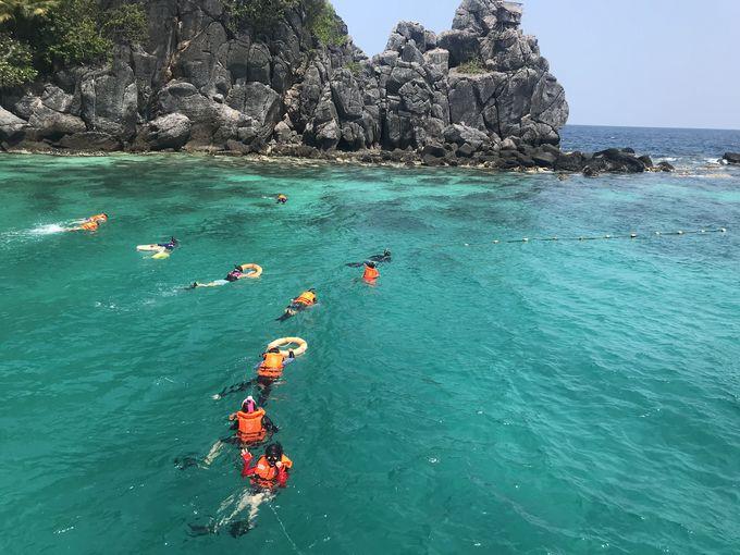 観光地化されていない美しい海で、シュノーケリング体験を