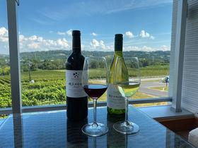 長野のワイン天国「シャトー・メルシャン 椀子ワイナリー」で多角的にワインを楽しむ
