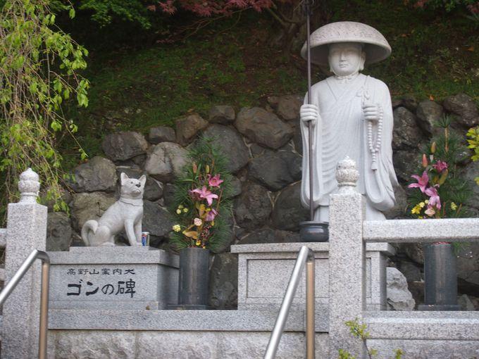 高野山の案内犬「ゴン」の碑もある高野山への表玄関、世界遺産「慈尊院」と「丹生官省符神社」