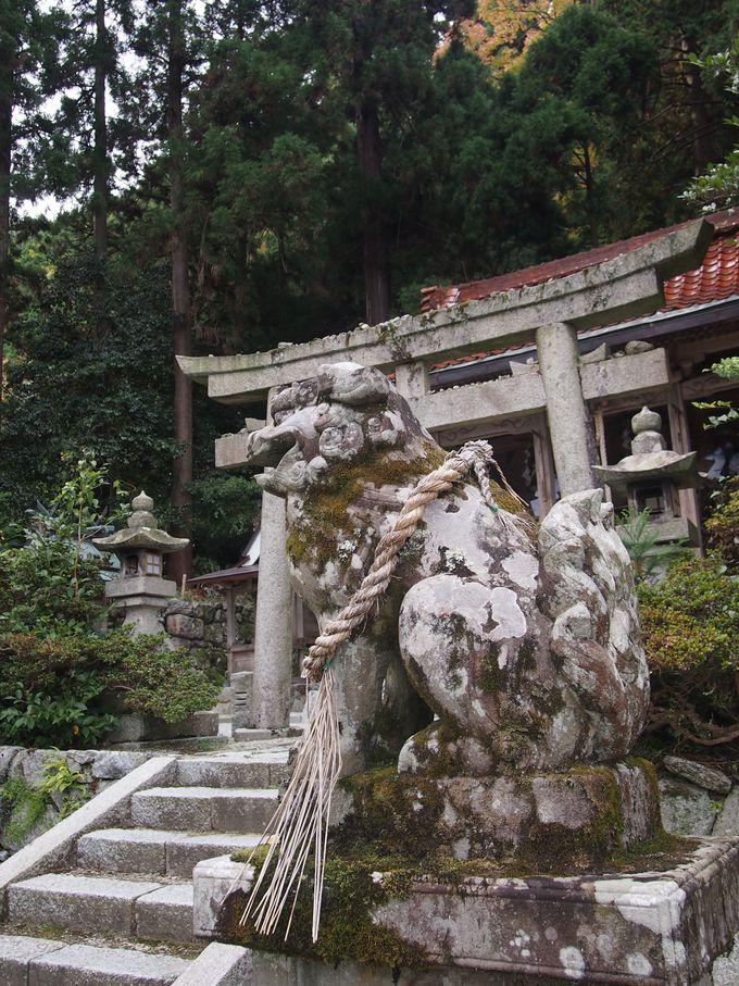 神話の世界、神々降臨の地、高天彦神社から橋本院そして極楽寺へ