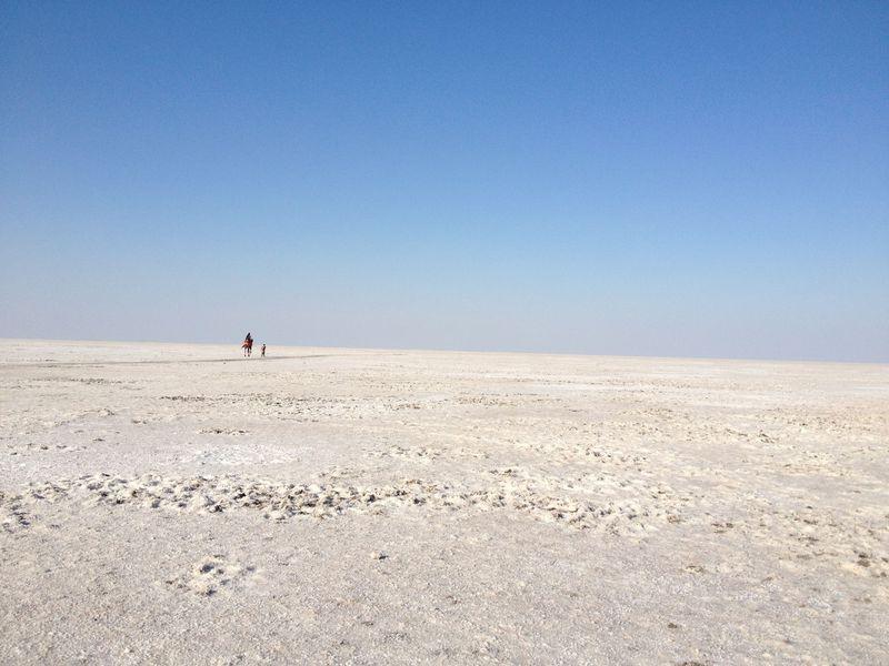 ウユニ塩湖がインドにも!?乾季のみ出現「カッチ湿原」は美しい塩の砂漠
