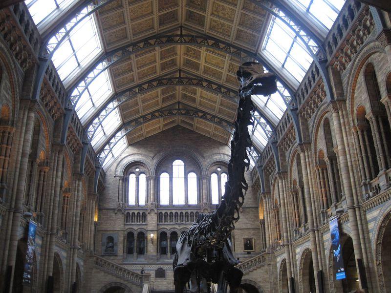 家族連れにもお勧め「ロンドン自然史博物館」は、遊びながら学べる無料の施設