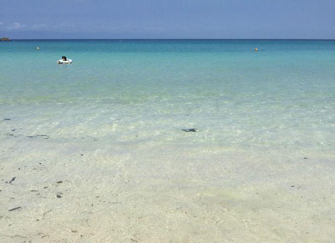 木村拓哉がサーフィンにやって来る、美しい海に遊びに行きませんか?