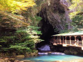 冒険気分も味わえる!日本最大規模鍾乳洞・山口県「秋芳洞」