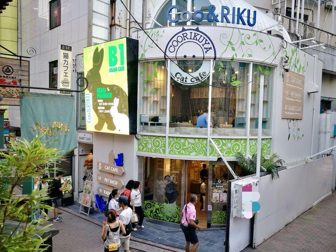 お店があるのは渋谷スペイン坂