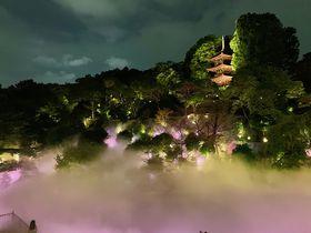 心に響く!霧に包まれるホテル椿山荘東京「東京雲海」