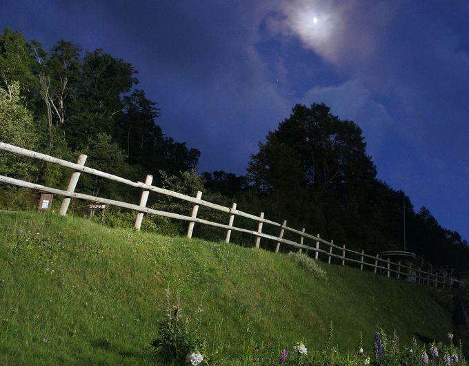 昼神温泉からの星空ツアーに参加すると、山麓駅まで楽々送迎つき