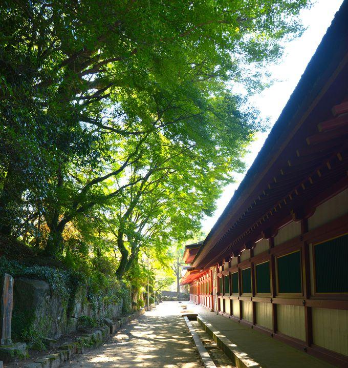太宰府駅を降りたら、そこはもう「大君の遠の朝廷」の地