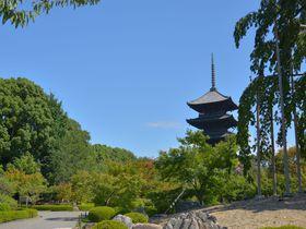 京都駅近く、「東寺」で平安京の面影が色濃く残る境内をめぐる