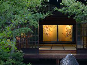 京都で日帰りお寺巡り!洛東の人気のお寺で癒しの旅