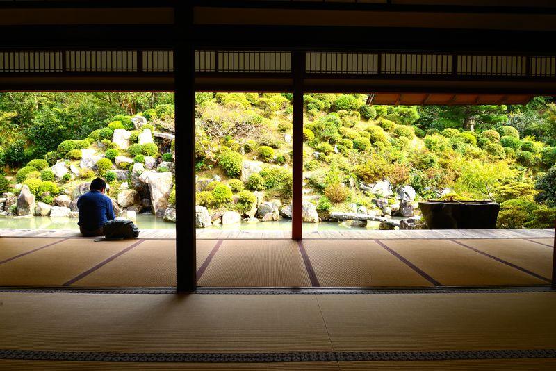 CMの庭園に国宝絵画の「智積院」は、充実した宿坊体験もお勧め!