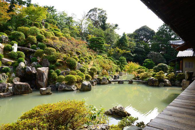 さすが、美を伝えるCMに使われた庭