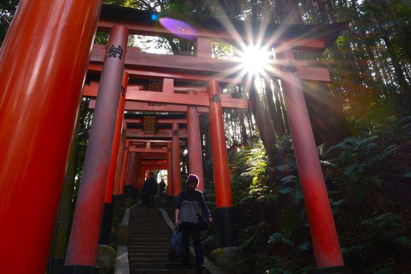 奥にも広がる神秘の世界…京都・伏見稲荷大社の魅力は千本鳥居だけじゃない!
