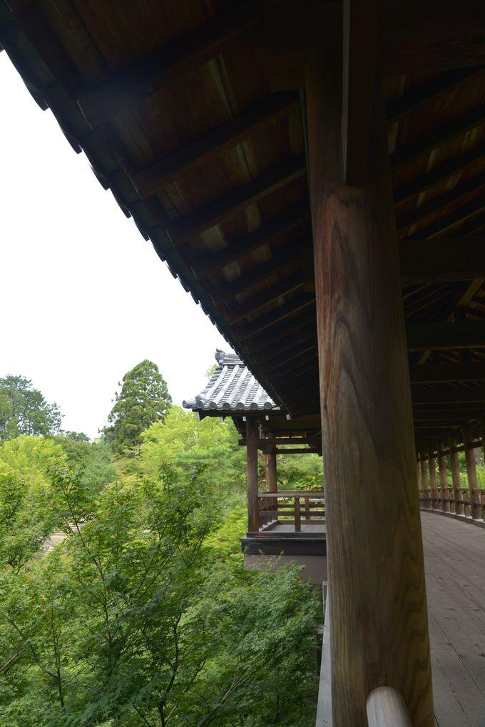 三ノ橋川の渓谷にかかる橋を下流からたどってみましょう