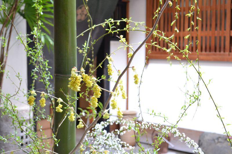 必見! 京都・西陣「織成館」で驚く、織元の伝統技術の粋