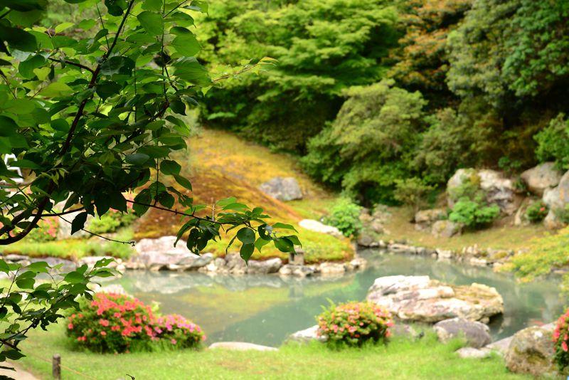 個性と調和!趣向の違う庭を巡ろう