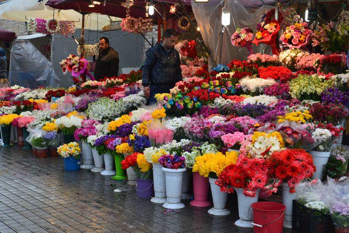 豊富な花々は、さすがチューリップの原産国