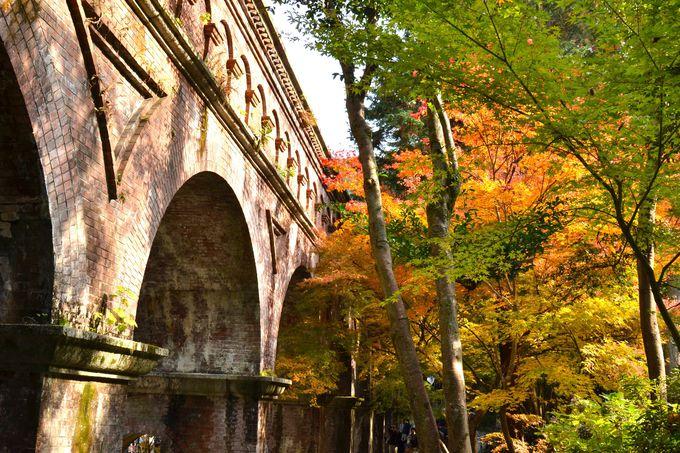 京都の近代化の象徴「水路閣」のむこう