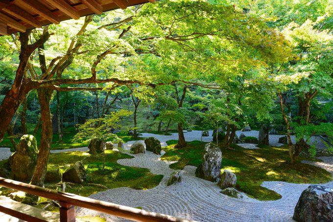 21.「光明禅寺」静の世界