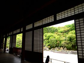 京都・南禅寺、こんな所に東照宮が!隠れた名所「金地院」は「黒衣の宰相」の寺