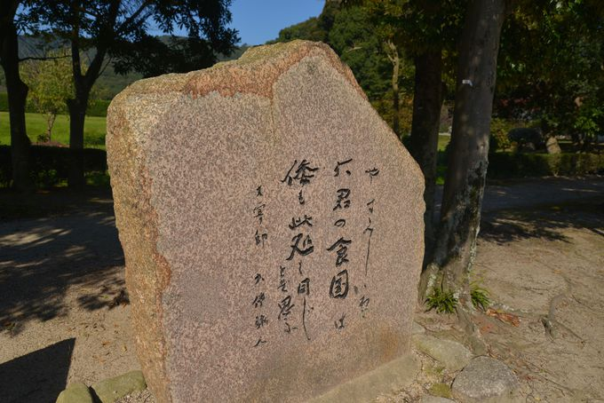 文化の西の殿堂には、日本最初の梅の香りが馥郁(ふくいく)と