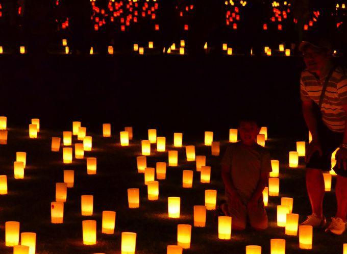 趣の違う会場をめぐる燈花会
