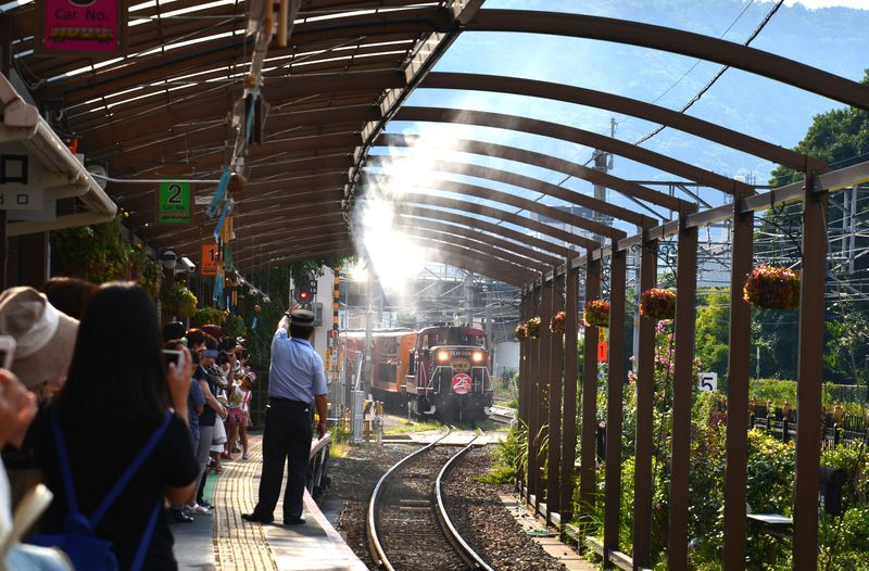 車窓から森林浴!クラシカルな嵯峨野トロッコ列車でめぐる京都・嵐山