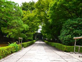 京都「相国寺」で守る金閣、銀閣の宝…伊藤若冲の世界へようこそ!