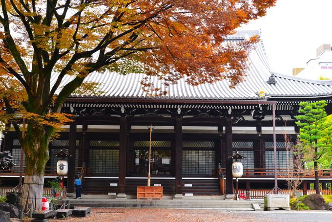 市役所前駅の南側には、あの「本能寺」も!