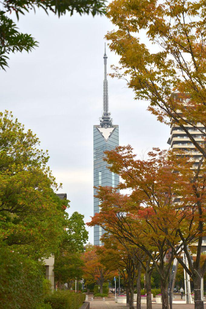 3.福岡市博物館