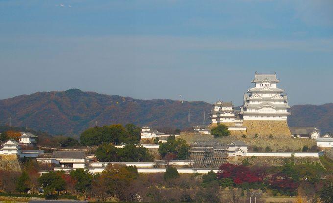 美しい白鷺となった姫路城