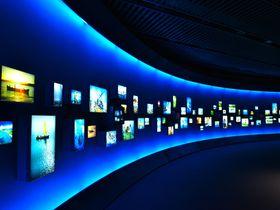 圧巻の展示!沖縄海洋博公園「海洋文化館」は、ディズニー『モアナと伝説の海』の世界