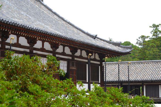 平城京の唯一の遺構・講堂