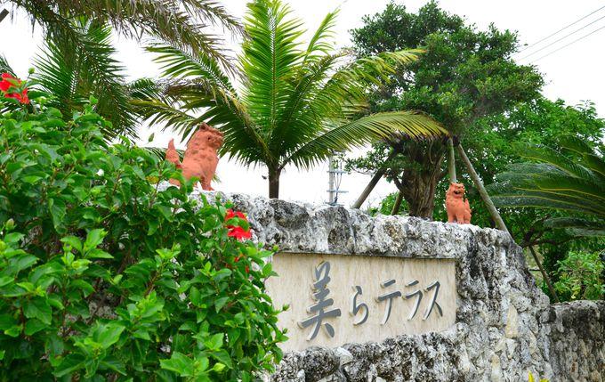 古宇利島にわたる前に寄りたい「美らテラス」