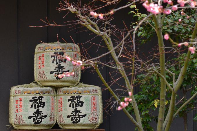 3日目:酒蔵を巡って阪神モダニズム建築を探訪