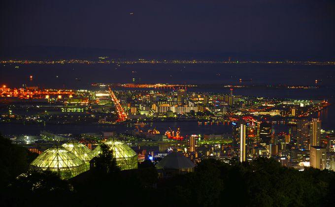 1日目夕方:布引ハーブ園で「1000万ドルの夜景」
