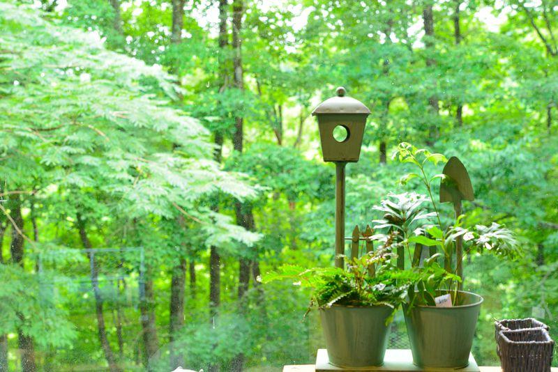 地元に詳しい新聞社が「1位」に選出した植物園