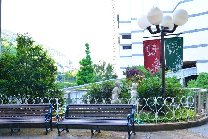 午前:まずは神戸の景色を体感できる「布引ハーブ園」へ