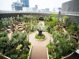 神戸の中心でお洒落な庭園レストラン「TOOTH TOOTH GARDEN RESTAURANT」