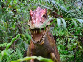 大人もハマる太古の森!名護「DINO恐竜PARK やんばる亜熱帯の森」
