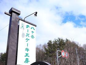 爽やかリゾートの楽しみ 「八ヶ岳チーズケーキ工房」で高原の味