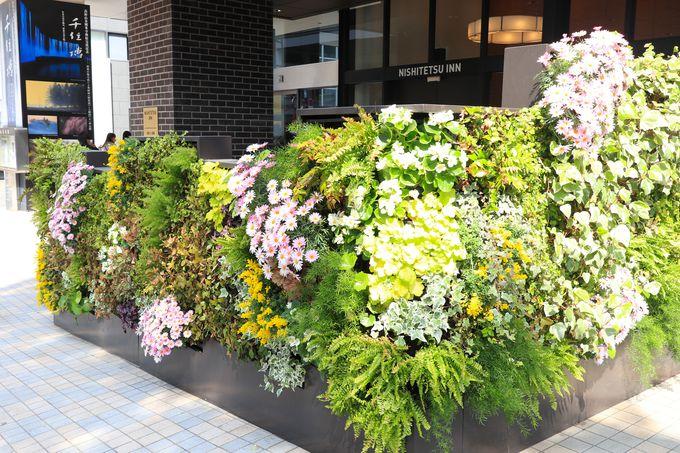 「天神」にも「博多」にも便利な「西鉄イン福岡」
