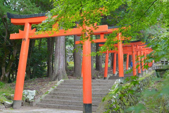 古事記や日本書紀にも名をとどめる出石