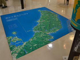 沖縄「ウフギー自然館」で貴重なやんばるの秘密を探る