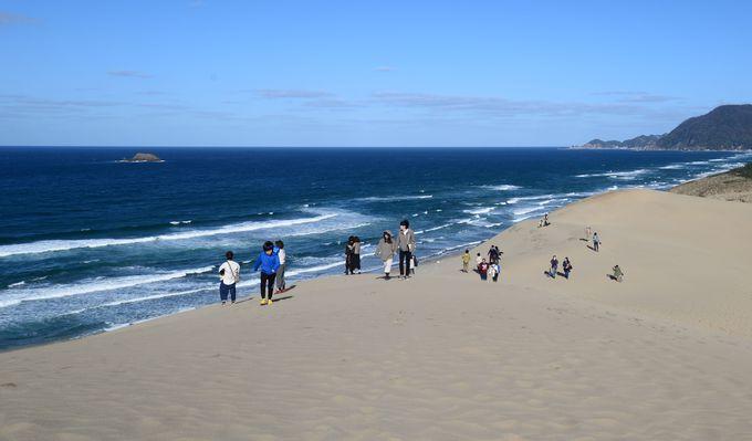 鳥取砂丘の魅力を丸ごと知る 鳥取砂丘ビジターセンター