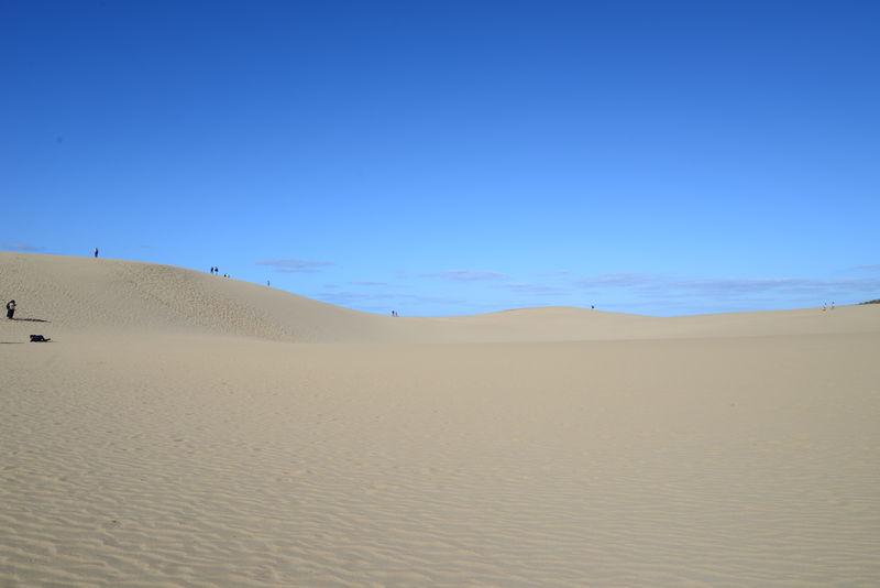 砂丘の魅力まるわかり!「鳥取砂丘ビジターセンター」は見学の一番に