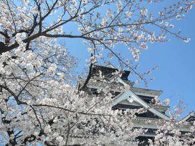 熊本城!歴女でなくても楽しめる、お薦めポイント